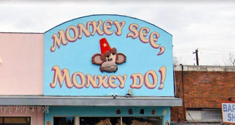 monkey-see-feature-1.jpg