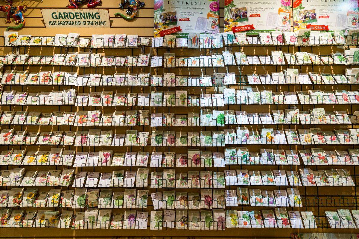 The Great Outdoors Seeds