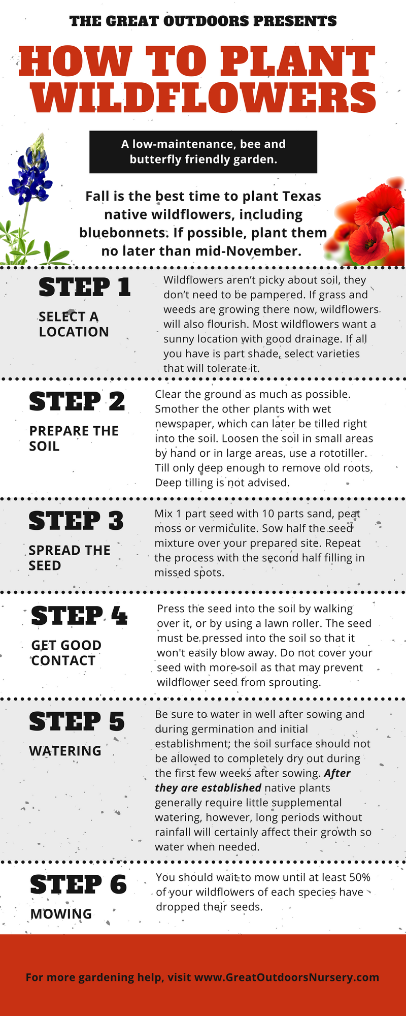 How to plant wildflowers.fw.png