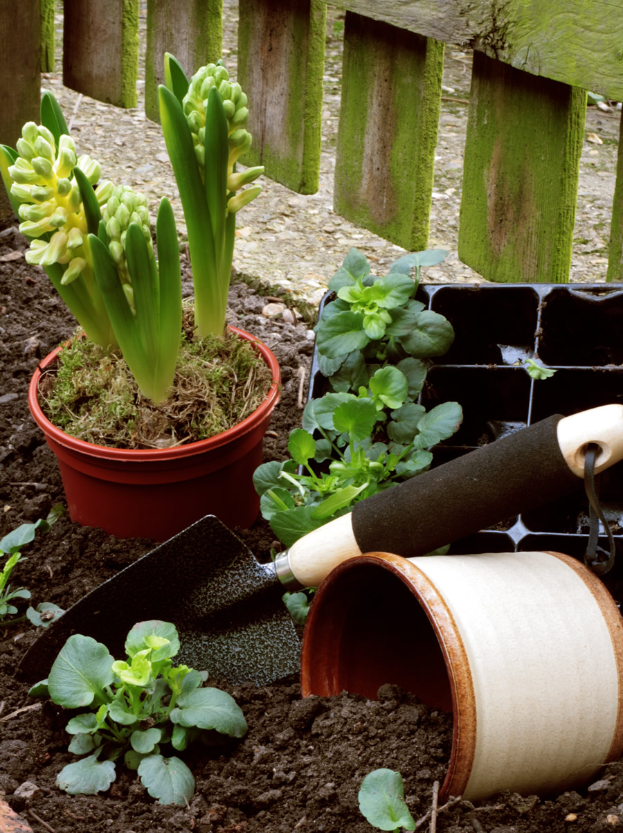 gardening101.jpg