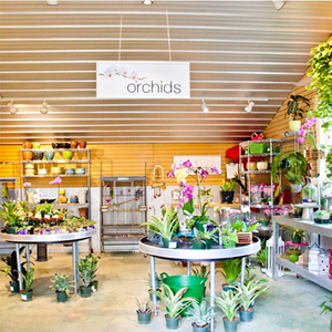 Orchid-Room-and-Gift-Shop1 2.jpg