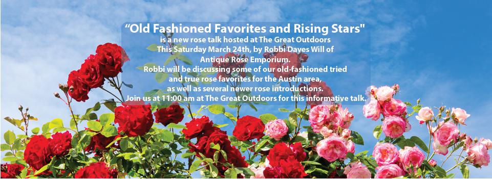 rose talk.png