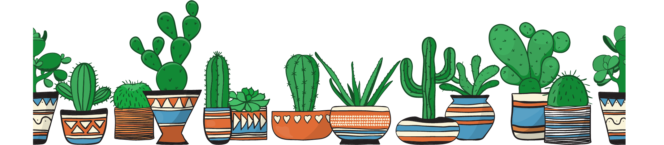 cactus collection.png