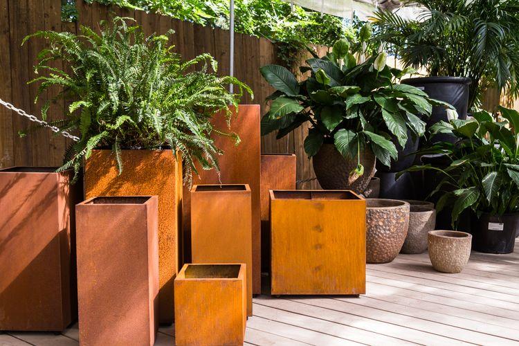 Premium Plant Containers