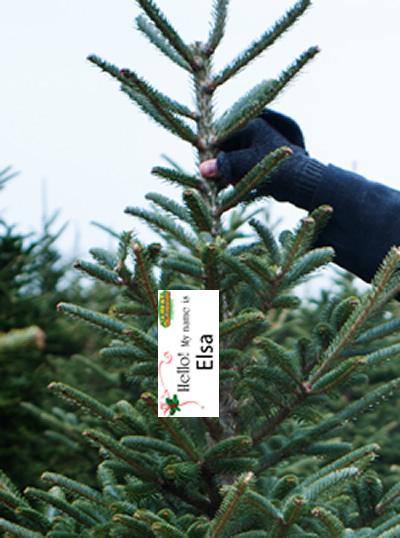 christmas name tag treeSm.png