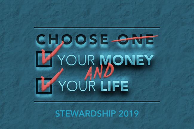 STEWARDSHIP 2019 Webslide copy 3.png