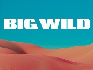 Big Wild - Superdream Tour