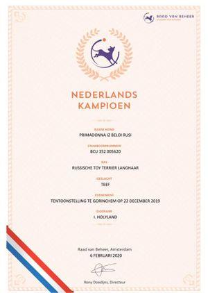 Nederlands Champion.jpg