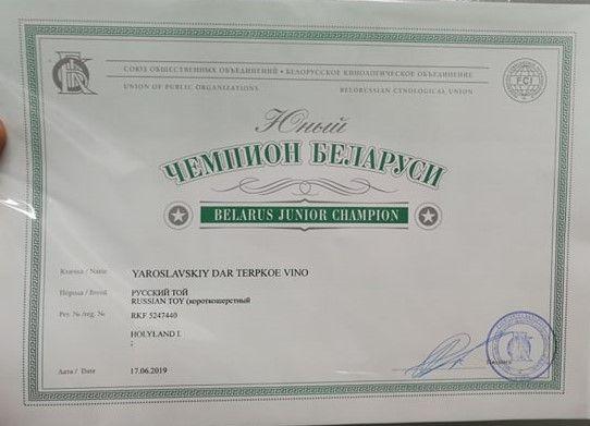 Jun Belarus vini 1.jpg