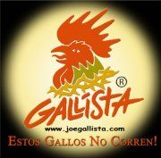 Gallista/Joe Lopez Artist