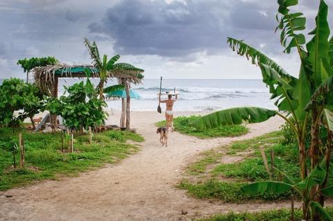 safari surf.jpg