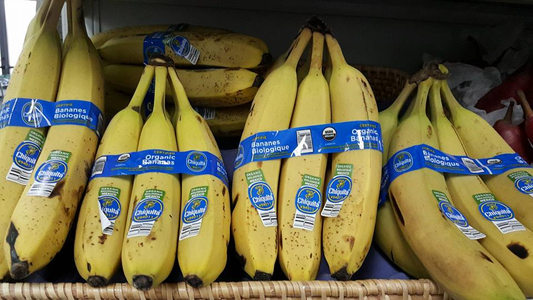 Organic Bananas.jpg