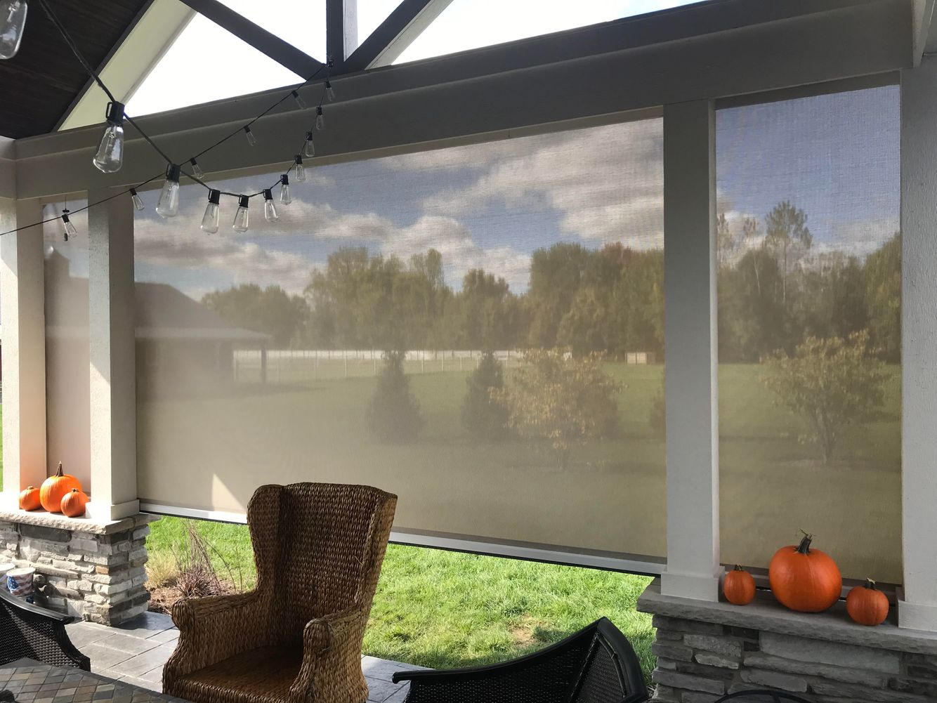Privacy screen for your patio