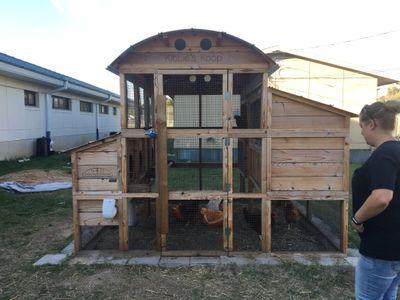 mendez-chicken-coop.JPG
