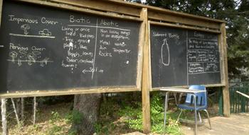 paredes-classroom-thumb.png