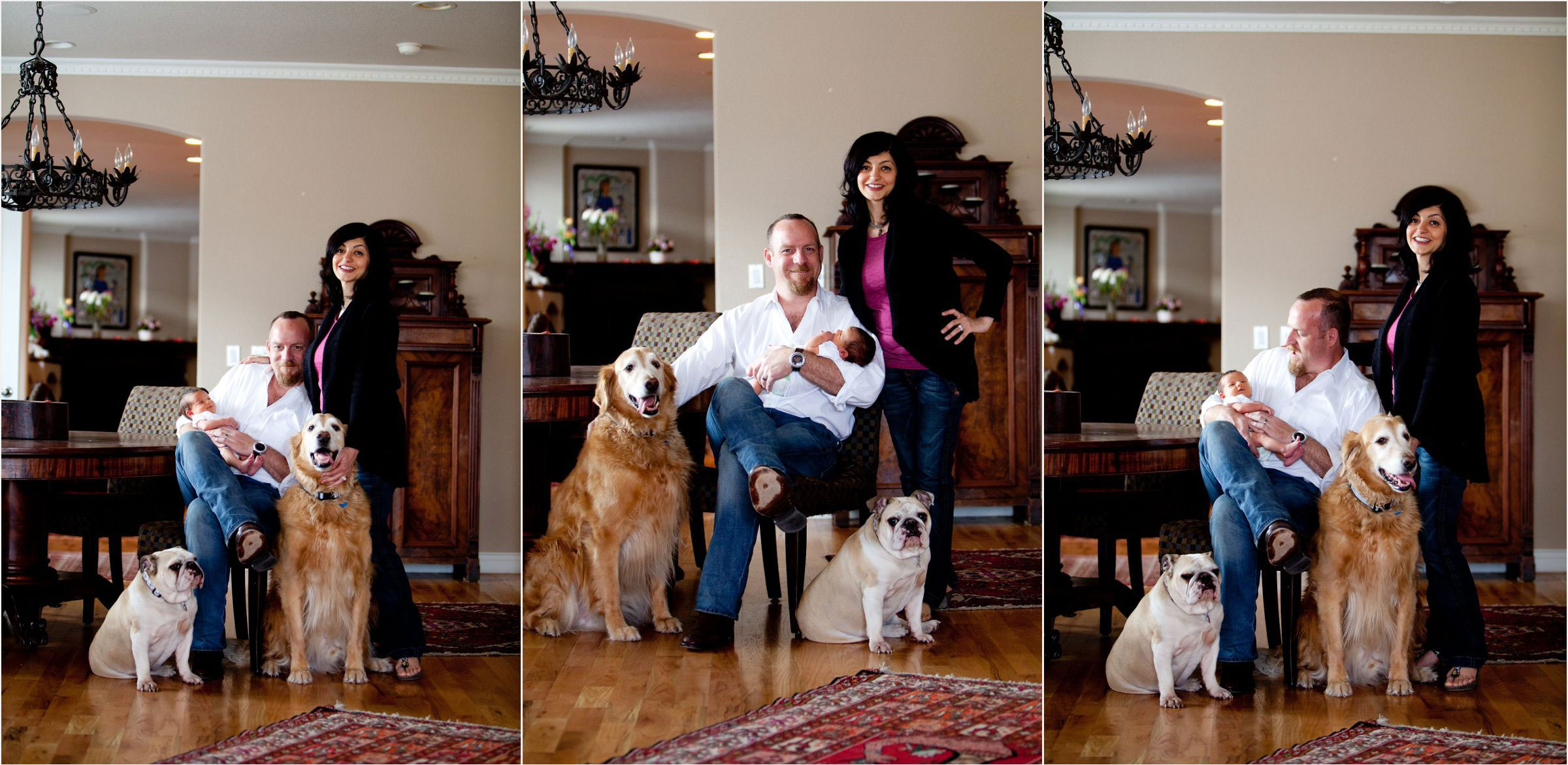 Classic-Denver-hilltop-home-location-family-photography-with-dogs-007