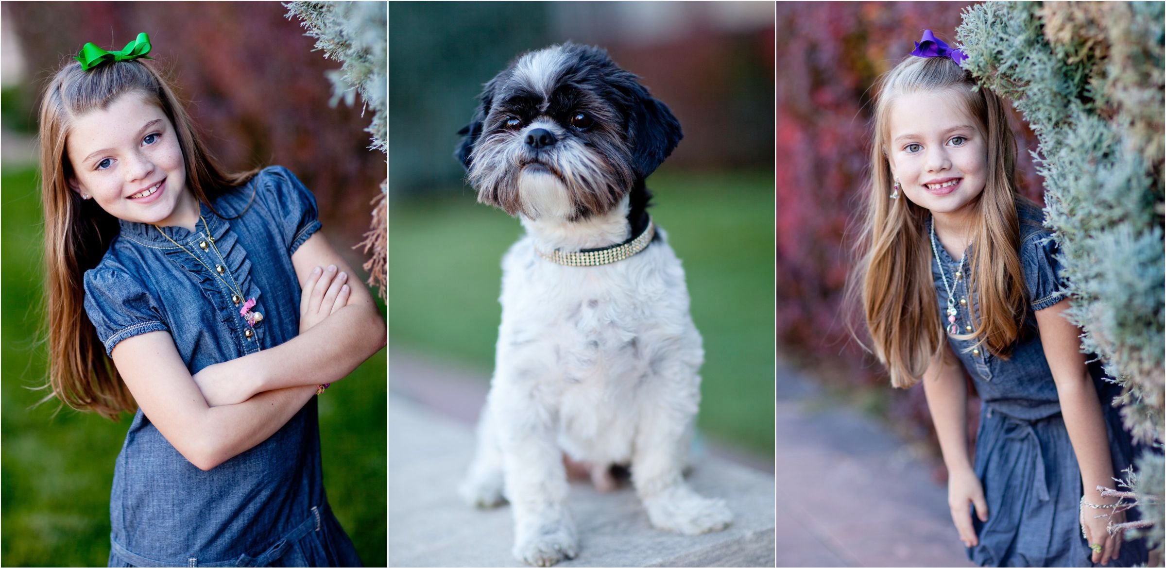 fun-sisters-and-their-dog-at-Denver-university-photo-shoot-006