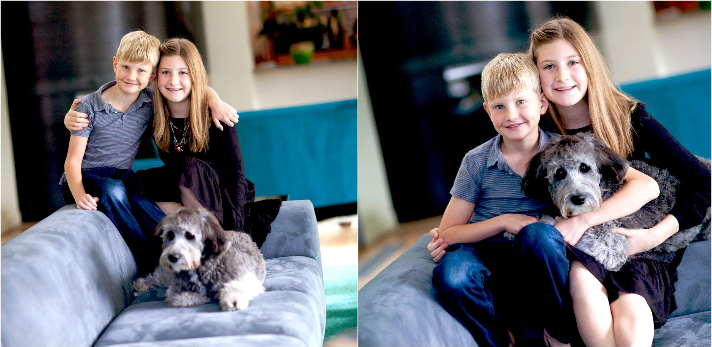 Lifestyle-photo-shoot-in-Denver-home-with-dog-002
