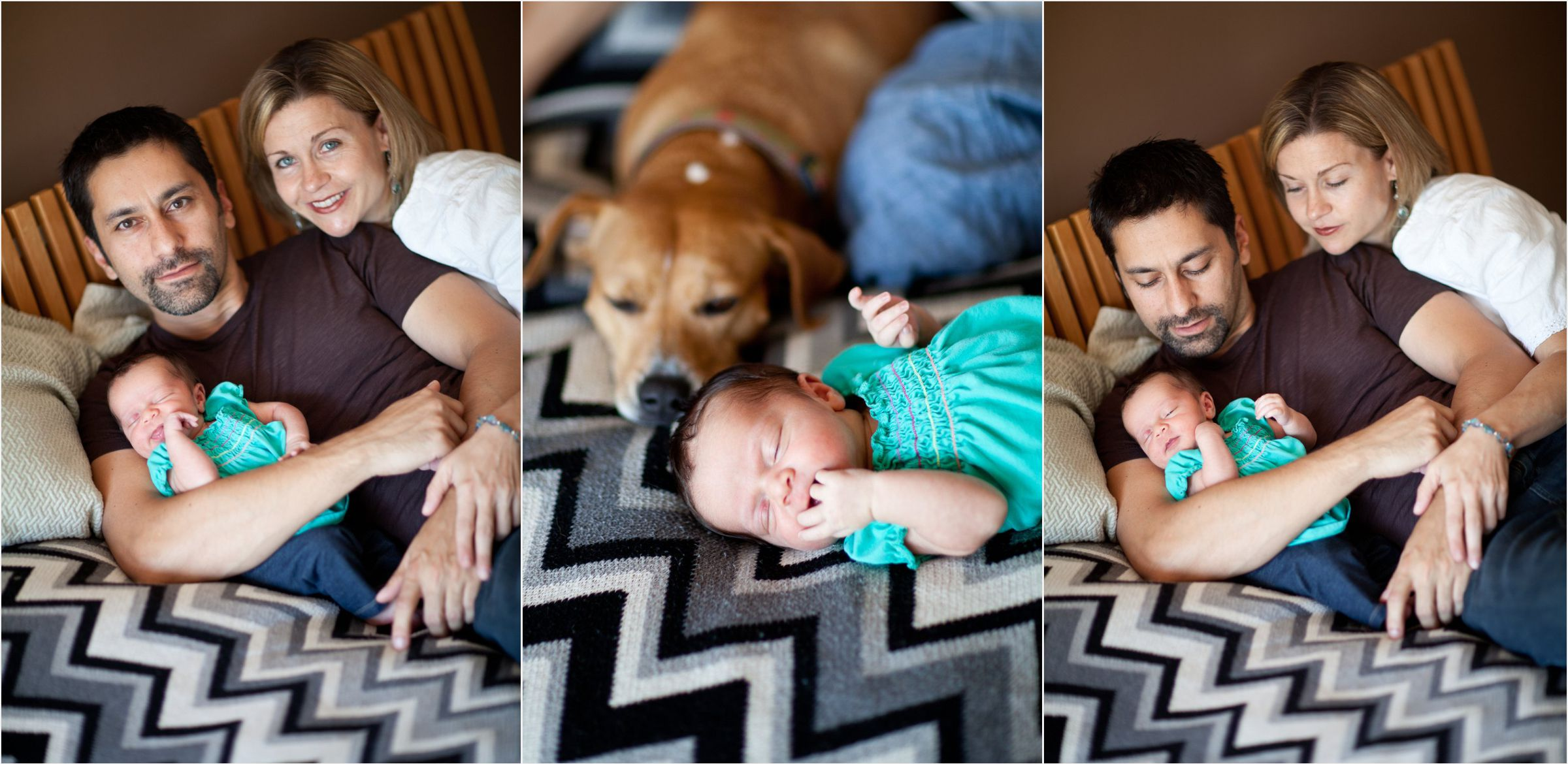 Dog-meets-baby-at-Denver-home-location-photoshoot-0003