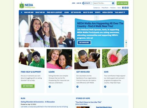 neda-website-screenshot.png