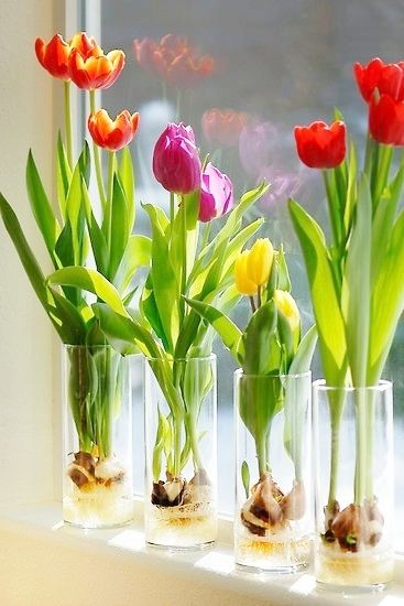 simplify your spring