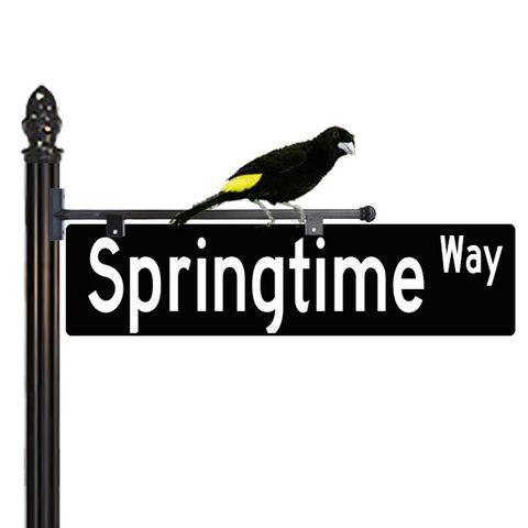 Decorative Street Sign with Bird