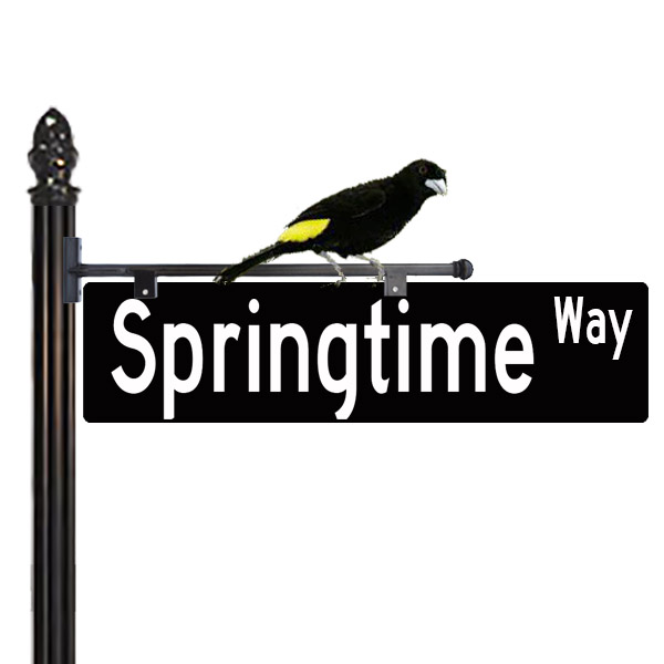 Decorative Street Sign with Bird