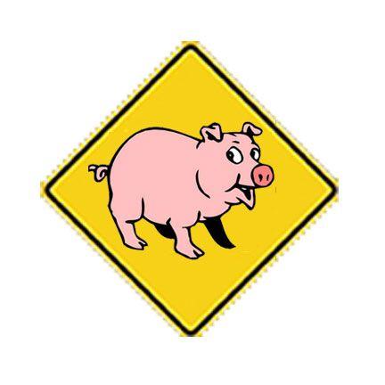 pig-crossing.jpg