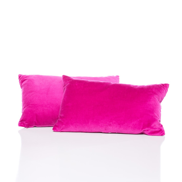 Fuchsia Velvet Pillow