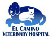 ECVH_logo.png
