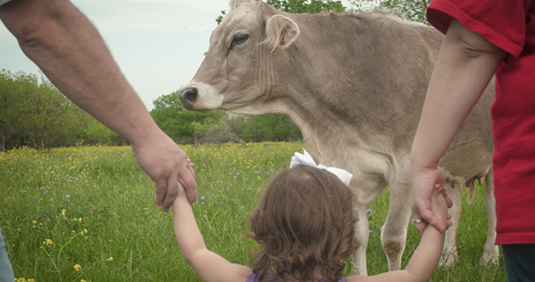 girl-with-bow-and-cow_WEBSITE.jpg