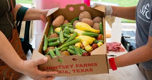 2020-09-19 DUFB Downtown Passing Produce Box WEBSITE.jpg