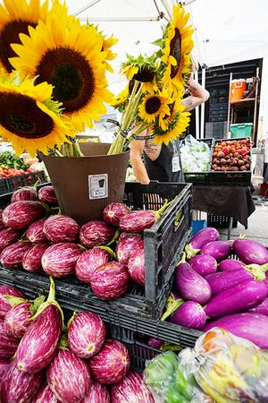 jb_sunflowers_eggplants_07-2015_450px.jpg