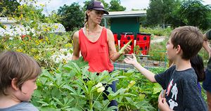 Liz and Campers Harvesting Okra