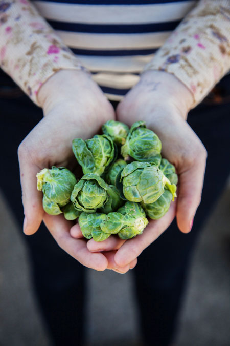 hands-holding-broccoli-SFC-Farmers-Market-Downtow-2014_WEBSITE.jpg