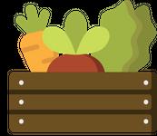 SFC Veggie Box.png