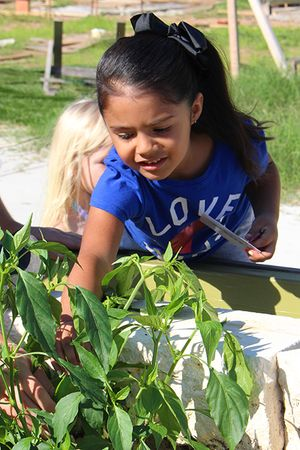 little_girl_gardener_450px.jpg