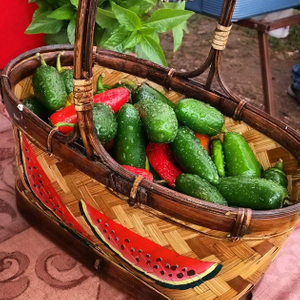 peppers_in_watermelon_basket.jpg