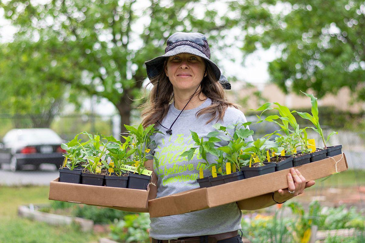 STH 2019-03-27 Woman with Seedlings IMG 1 WEB.jpg