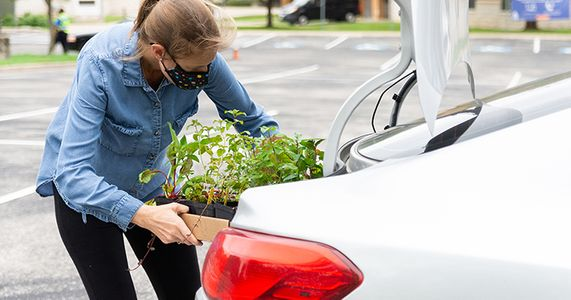 2020-09-23 STH Joy Putting Plants in Car IMG 03 WEBSITE.jpg