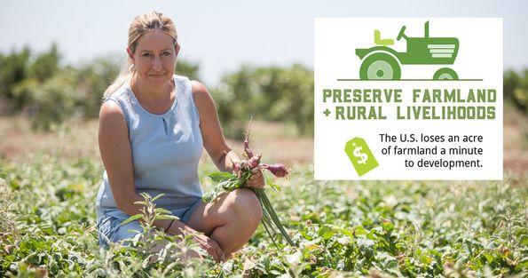 2018 Farmers Market Week - Preserve Farmland
