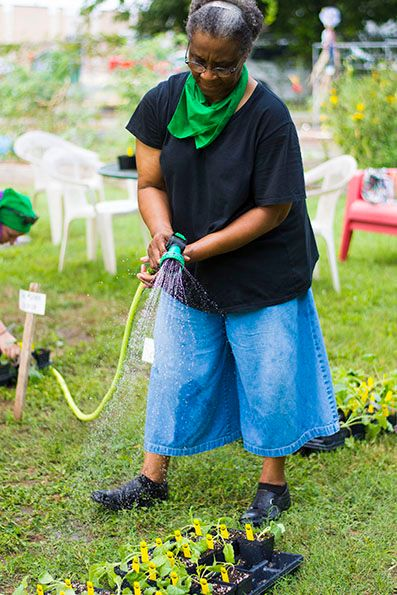 2017-09-Spread the Harvest Resource Give Away-the-Harvest-Volunteer-Watering-Transplants_WEBSITE.jpg