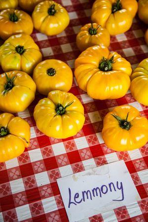 tomatoes grow.jpg