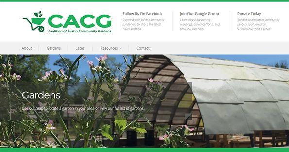 cacg-website_WEBSITE.jpg