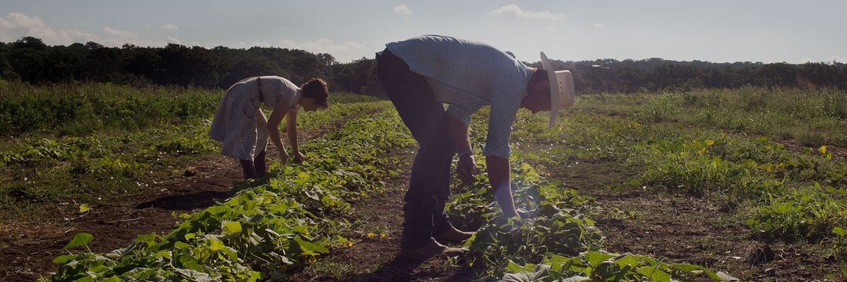 You Can Help Local Farmers Thrive