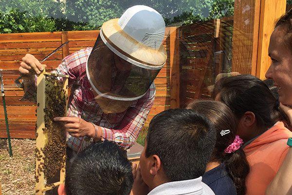 Teaching-Garden-9.jpg