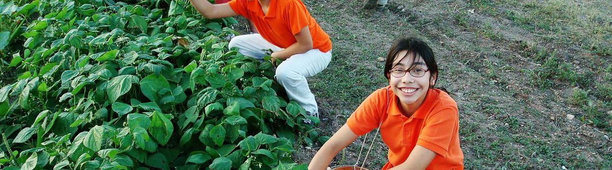 girl_in_orange_gardening_1800px_v2.jpg
