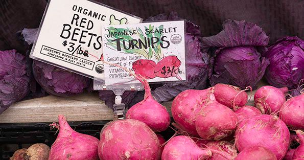 Johnsons Backyard Garden Scarlet Turnips Purple Cabbage