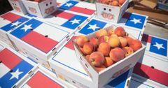 Lightsey Farms Texas Peaches Boxes