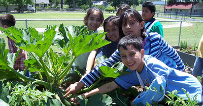 Sprouting-Healthy-Kids-project_WEBSITE.jpg